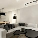 salon z kuchnią 2 (2)