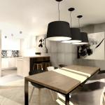 salon z kuchnią 2 (8)